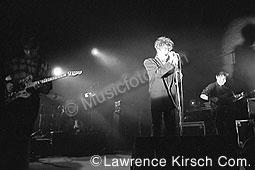 Echo & The Bunnymen echo4.jpg