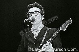 Costello, Elvis elvis_c1.jpg
