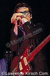 Costello, Elvis elvis_c13.jpg