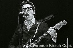 Costello, Elvis elvis_c5.jpg