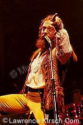 Jethro Tull tull8.jpg