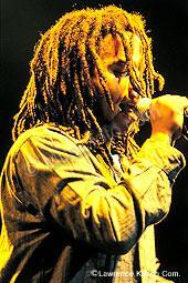 Marley, Ziggy ziggy1.jpg