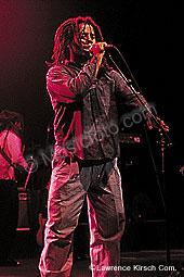 Marley, Ziggy ziggy8.jpg